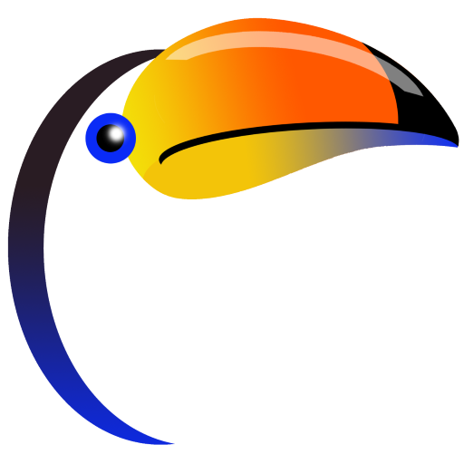 toucan consulting; toucanclick.com; local seo company; affordable websites